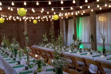 Wedding event packages lasalle peoria galesburg illinois over the years i do events has seen hundreds of weddings thus giving us a good vision on what combinations work best with this expertise we are now able junglespirit Choice Image