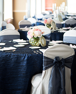 navy wedding decoration, chair sashes, chair covers, bows